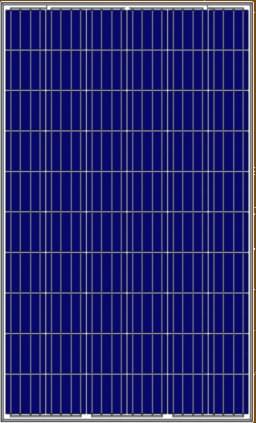 AMERISOLAR-AS-6P30-PERC-CUT Solar Modules Manufacturer | Amerisolar Solar Energy Company